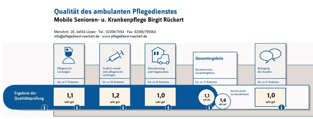 Übersicht MDK 2014 - Mobile Senioren- und Krankenpflege Birgit Rückert